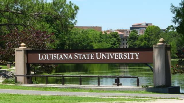 International Student Scholarships at Louisiana State University of  Alexandria – USA, 2021 - Myschool