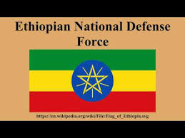 Ethiopian National Defense Force Job