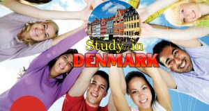 2017 Danish Government International Undergraduate Scholarships