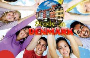 2017 Danish Government International Undergraduate Scholarships