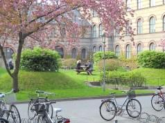 Study In Denmark: Centre For Privacy Studies Scholarship At The University Of Copenhagen, Denmark - 2018