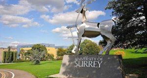Newtons Scholarships At University Of Surrey, UK 2019