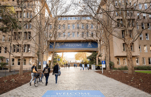 W T Mollison International Scholarships At University Of Melbourne - Australia
