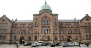 Social Medicine Fellowships At University Of Copenhagen, Denmark