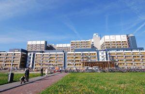Lutfia Rabbani Foundation Scholarships At Leiden University - Netherlands