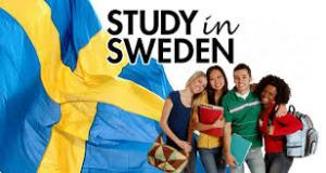 Full Swedish Institute Scholarships For Global Professionals (SISGP) Programme - Sweden