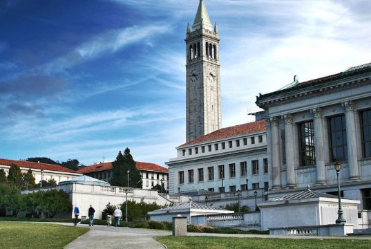Olive Summer Fellowship In Laboratory Research Experience Program At UC Berkeley - USA