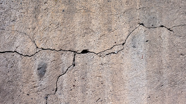 Photo of a crack branching across a wall