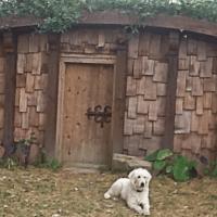 hobbit_house2