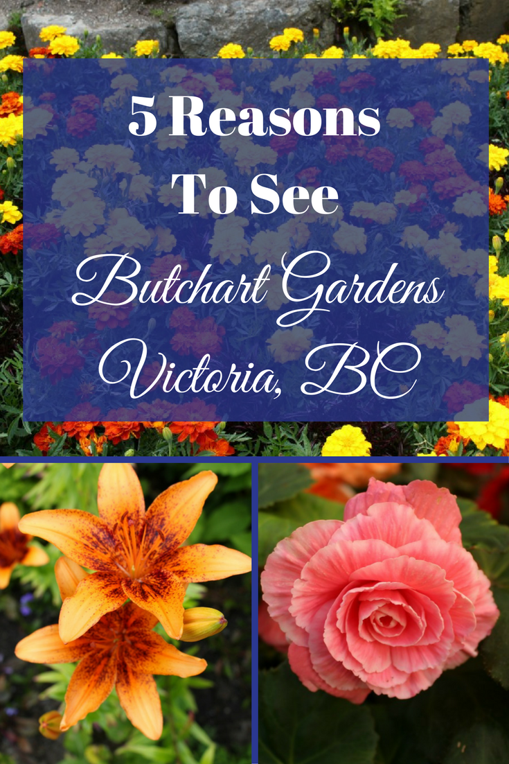 5 Reasons To Visit Beautiful Butchart Gardens Victoria Bc