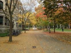 My walk to Spanish class