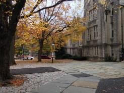 Near the University Chapel