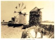 Σίφνος-Αράδες 1950