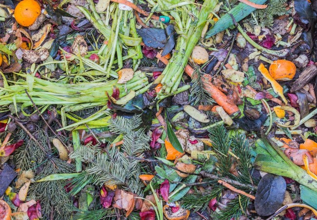How To Make Your Own Compost At Home?