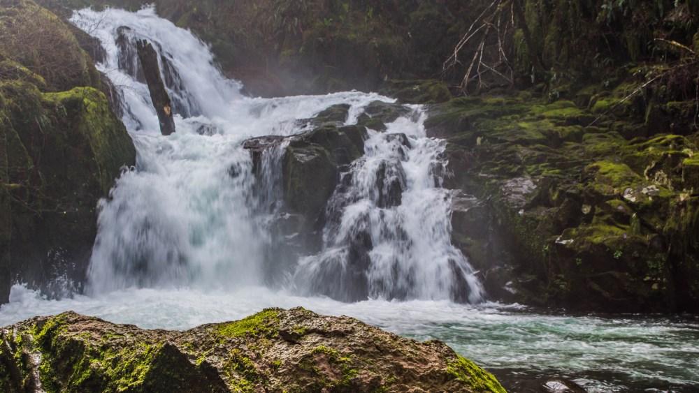Sweet Creeks Fall