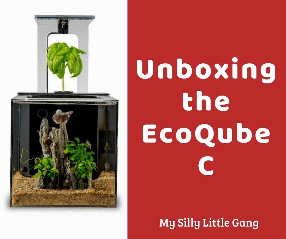Unboxing the EcoQube C