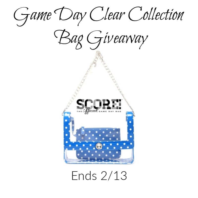 Game Day Clear Collection Bag Giveaway ~ Ends 2/13 @las930 #MySillyLittleGang