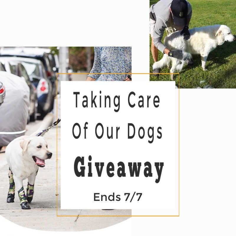 Taking Care Of Our Dogs Giveaway ~ Ends 7/7 @walkeepaws @las930 #MySillyLittleGang