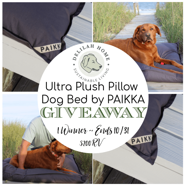 Delilah Home Ultra Plush Pillow Dog Bed by PAIKKA Giveaway ~ Ends 10/31 @DelilahHome @DeliciouslySavv #MySillyLittleGang