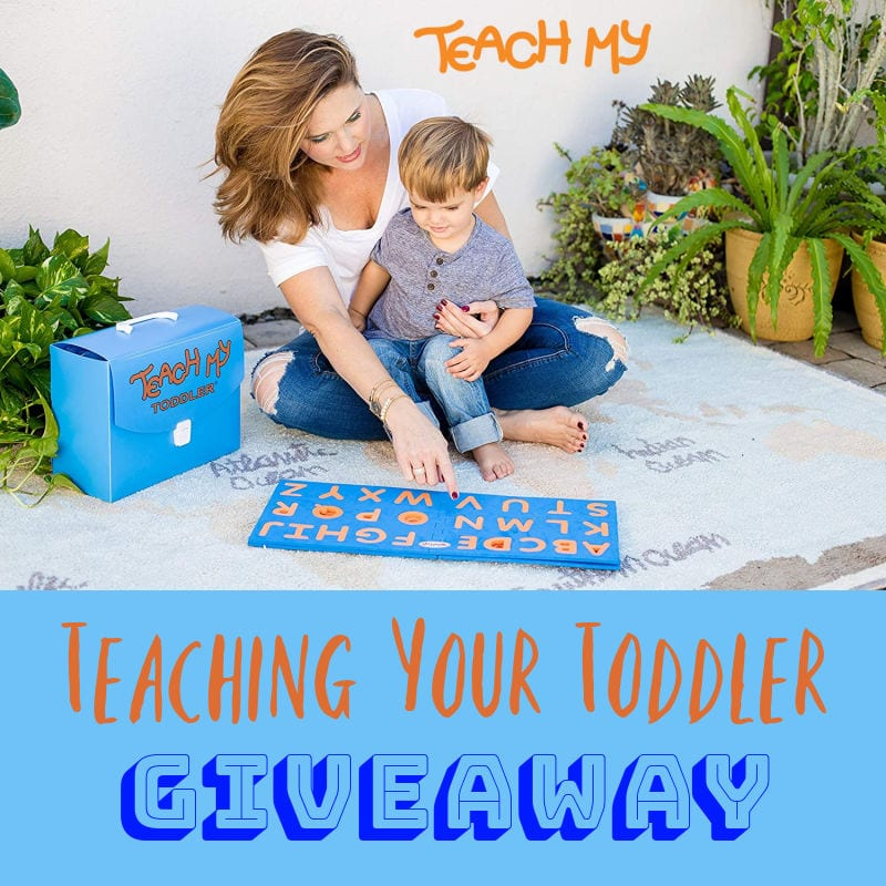 Teaching Your Toddler Giveaway ~ Ends 3/11 @teachmy @las930 #MySillyLittleGang