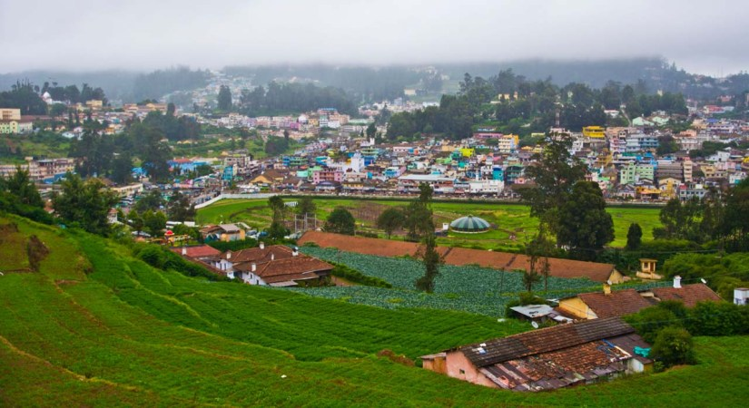 View from room in Ooty