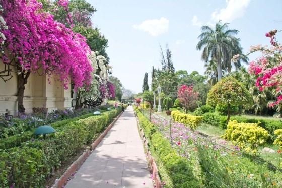 Flower Garden at Saheliyo ki badi Udaipur