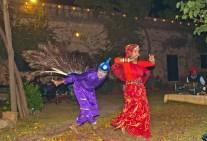 Kasroli performance 3