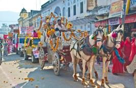 Pushkar camel fair buggies