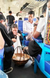 Hawker in train