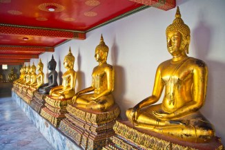 Wat pho compound buddha statues in row
