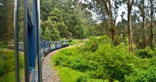 Nilgiri Mountain Railway on curve from Ooty to Metupalaiyam