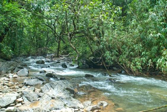 Water stream Dudhasagar