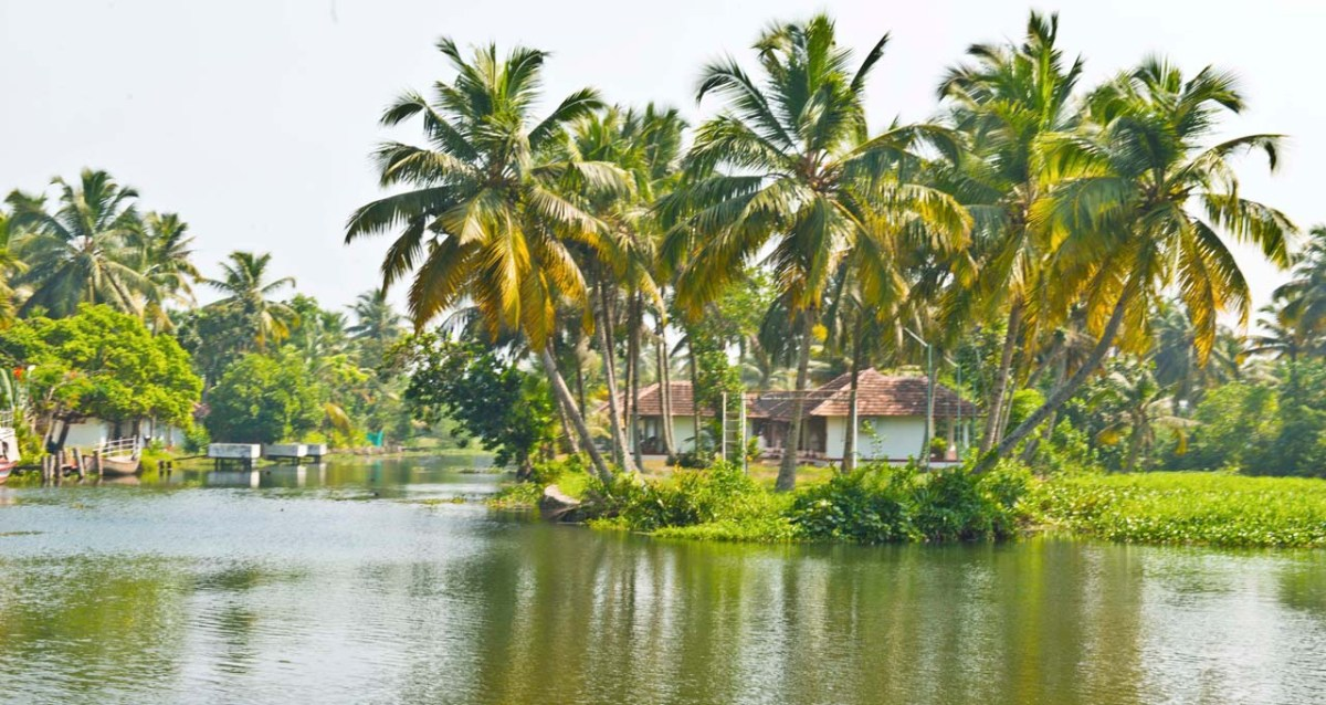 Kumarakom or Alleppey and Backwaters of Kerala