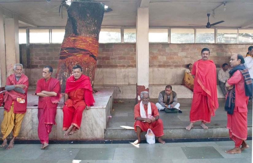 Kamakhaya temple priests