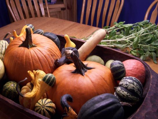 Bowl of Thanksgiving Pumpkins, squash and gourds
