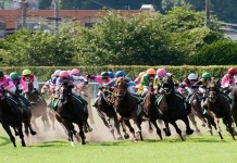 Japan Racing Association to introduce new iGambling blocking system