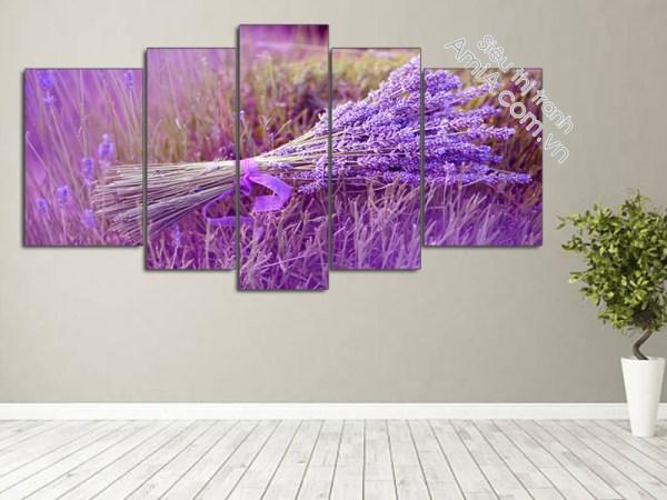 Tranh hoa Lavender đẹp nghệ thuật AmiA 2007