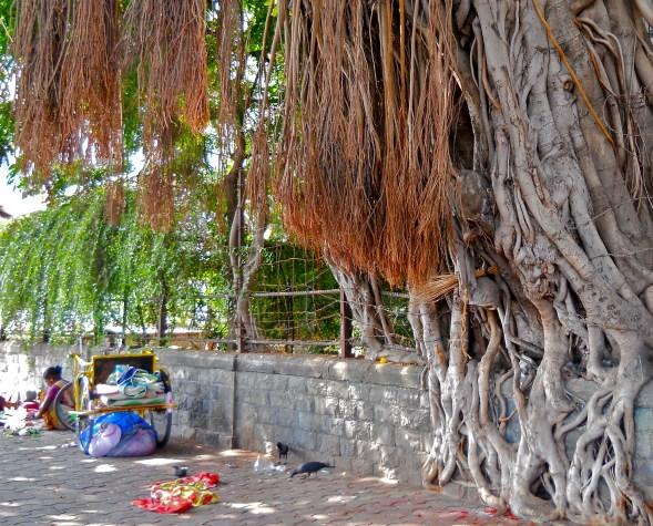 'homeless' près du Taj Mahal Palace - Mumbai