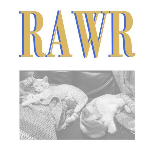 Sage Suede - Un Photo de Toi Nu, from RAWR mixtape