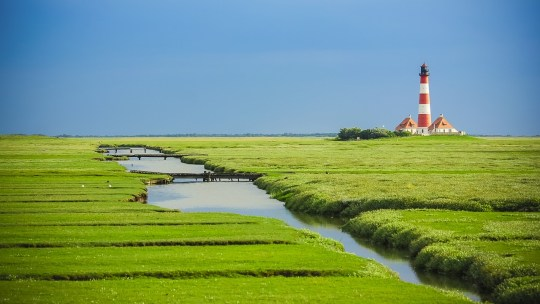 Friesland a world apart
