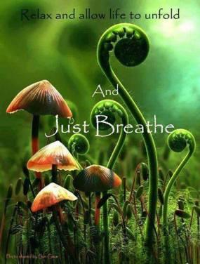 breathe (4)