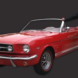 Dave-and-Mustang-Grey