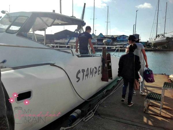 Oyster farm boat cruise