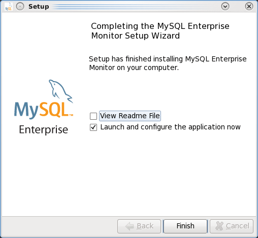 Installing the MEM 3.0 Service Manager - Step 13: Ready to launch the Service Manager