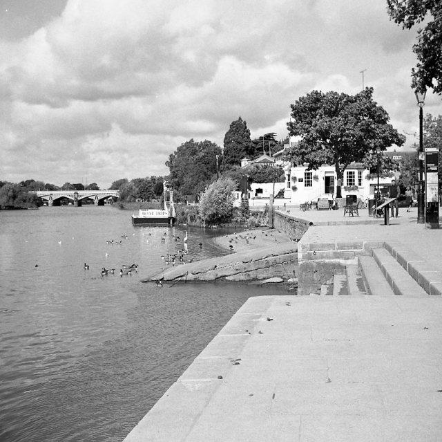 yashica 635 tlr ilford hp5 richmond london thames black white b&w film medium format 120 boat trees