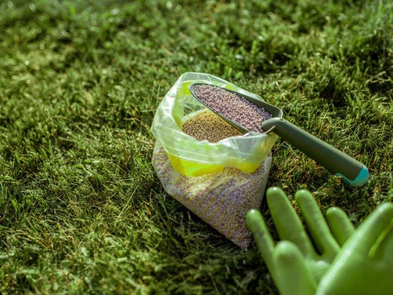 The Use of Phosphorus in Fertilizer