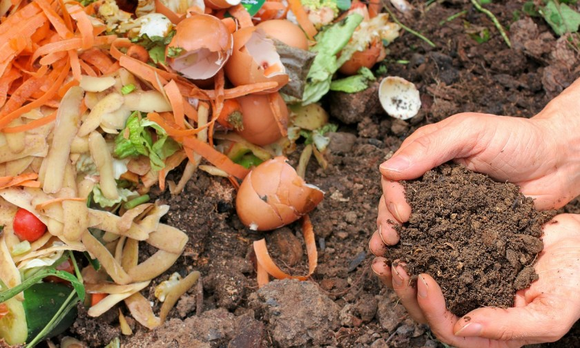 When Is Compost Ready?