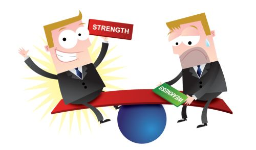 strengths and weaknesses of cobit
