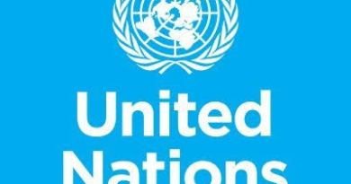 UN To Declare Nation Out Of Nigeria And Cameroon By July 10