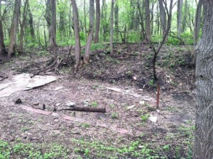 The foundation of a Pest House located in Hickory Hill Park, near the Black Angel.